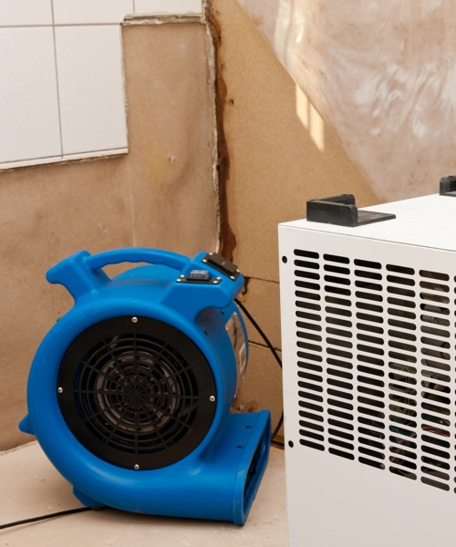 water damage restoration project by griffiths