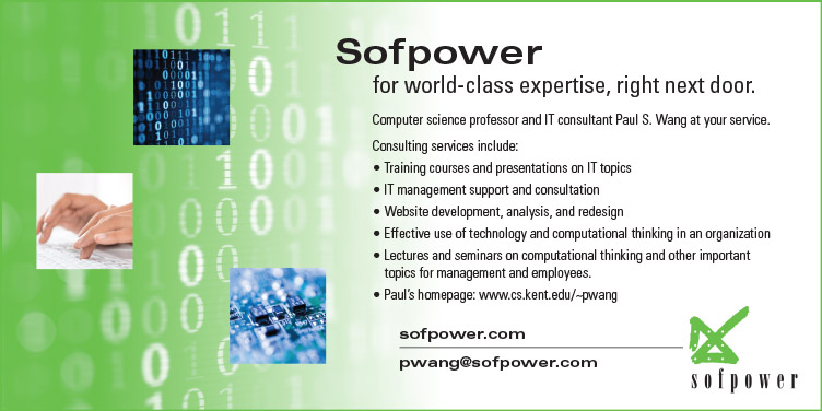 Sofpower Paul Wang IT Consulting Services