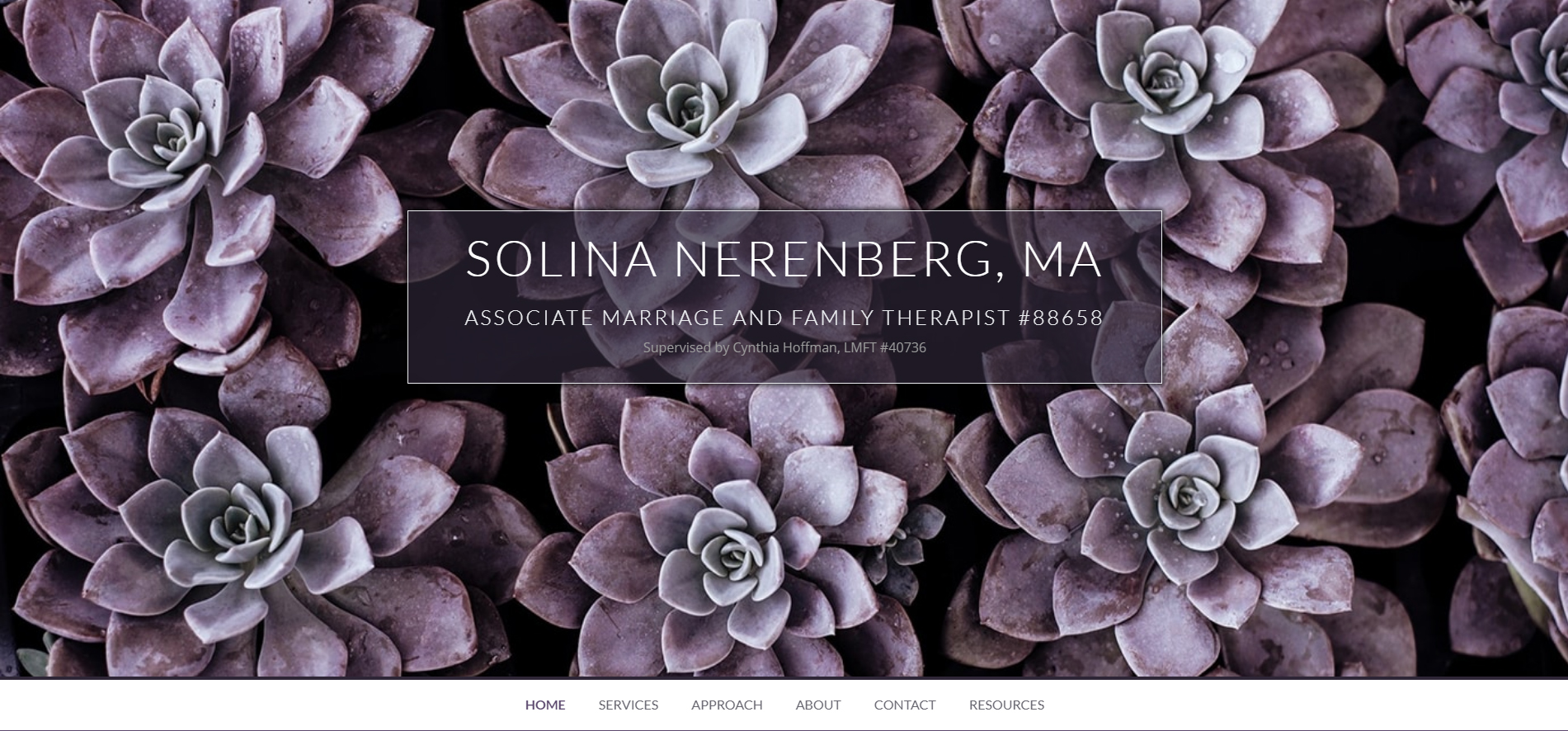 The professional therapy webpage of Solina Nerenberg designed by Alisha Rosen