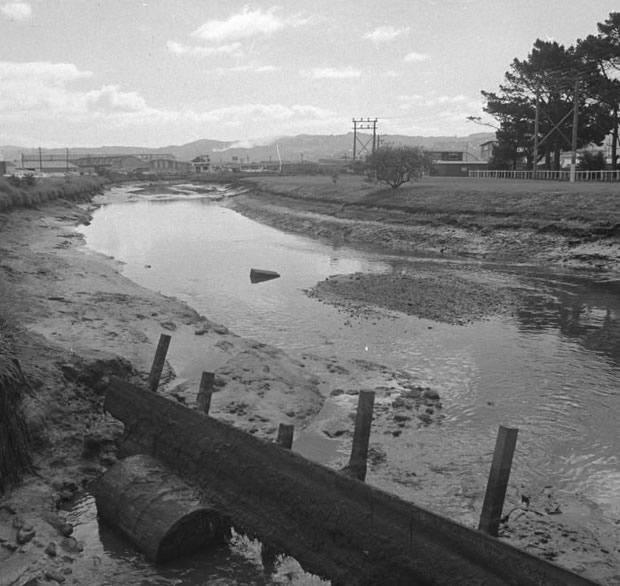 Waiwhetu Stream mid 1970s