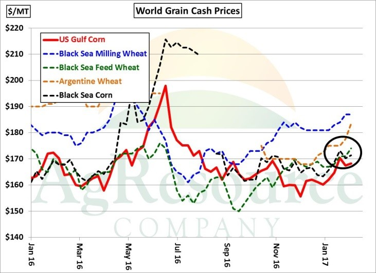 Global Grain Supply & Demand in the Era of Covid-19