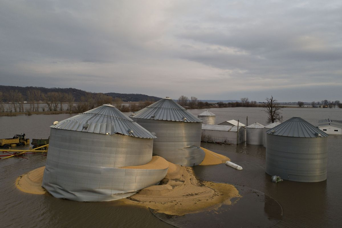 Flooded Grain Storage - What You Should Know