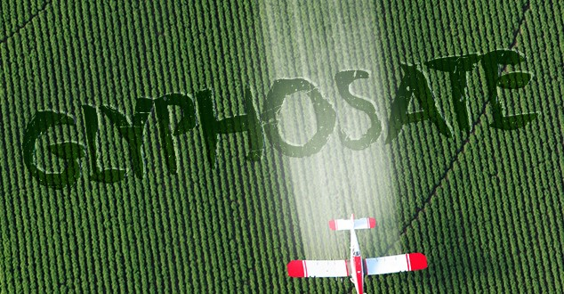 Glyphosate - Just EXACTLY where is the devil?