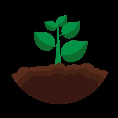 Soil Analytics