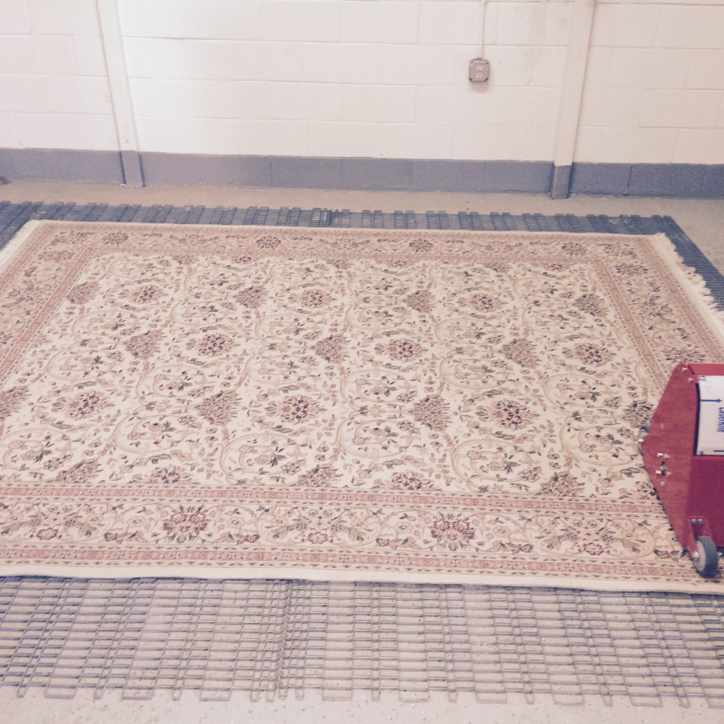 Carpet being cleaned in Vancouver WA