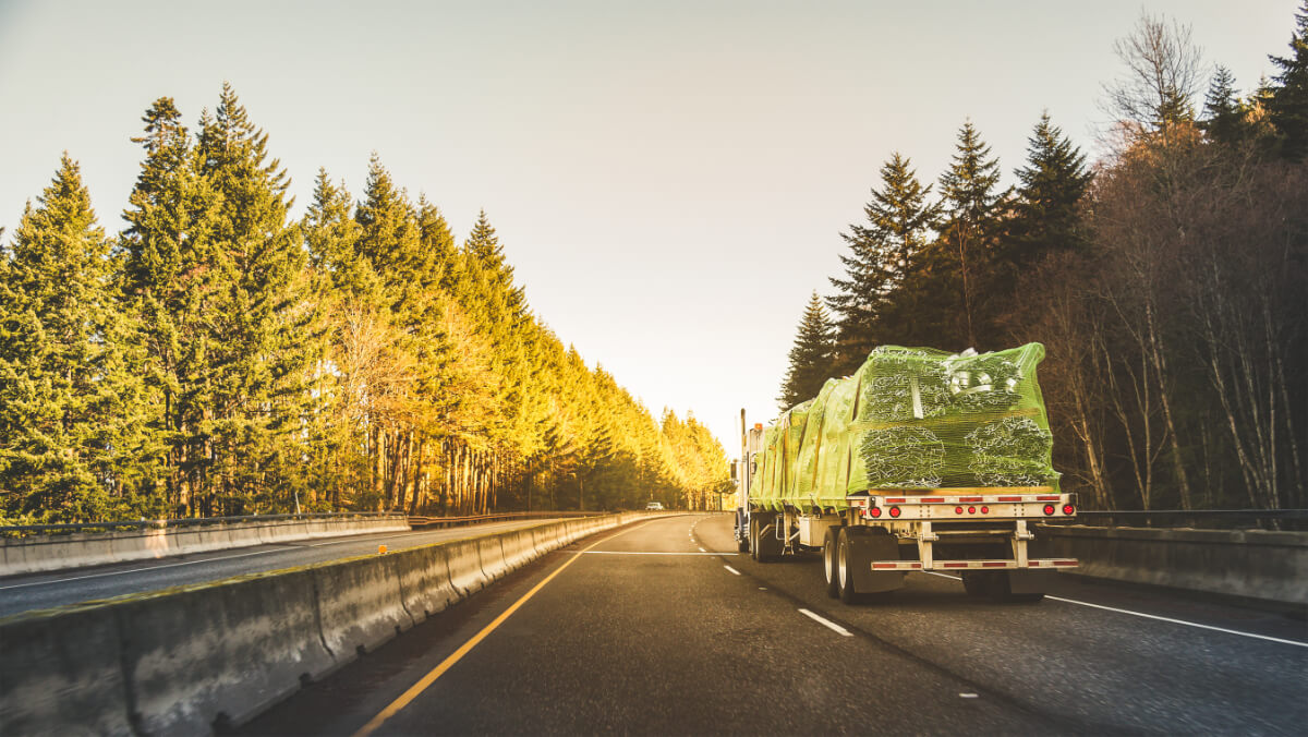 flatbed truck on road with trees