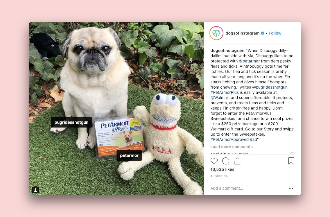 A Dogs of Instagram post that announces a giveaway sponspored by Pet Armour