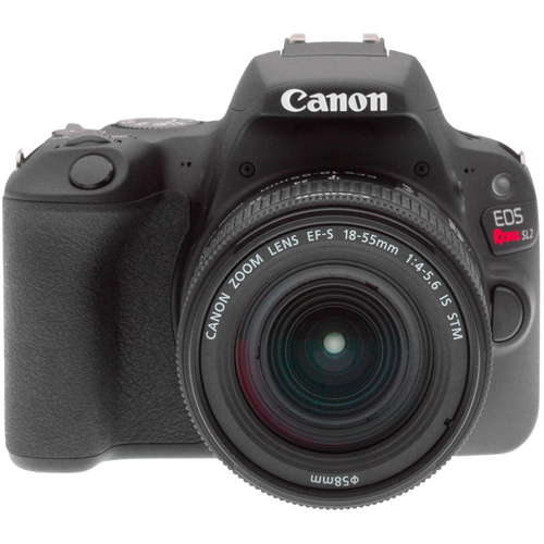 Canon EOS Digital Rebel SL2 Camera - EN