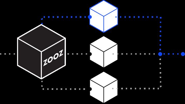 ZOOZ Process