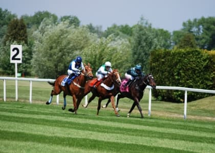 Horse racing in action