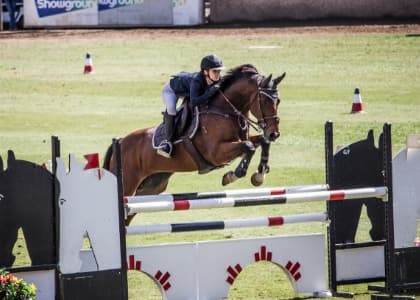 Peppertree Equestrian team in action