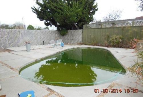 terrible real estate picture dirty pool