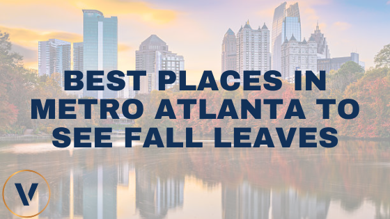 Best Places in Metro Atlanta to See Fall Leaves