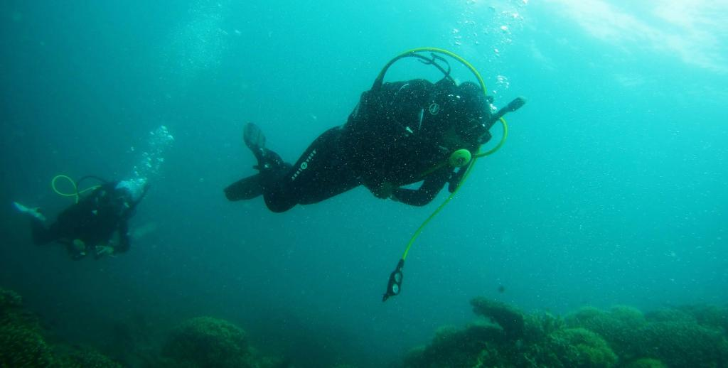 Scuba Diving near Neil Island in Andaman