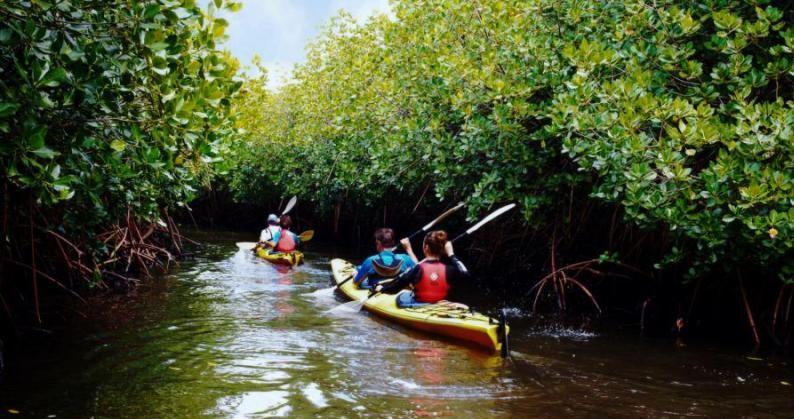 Kayaking in Andaman Islands