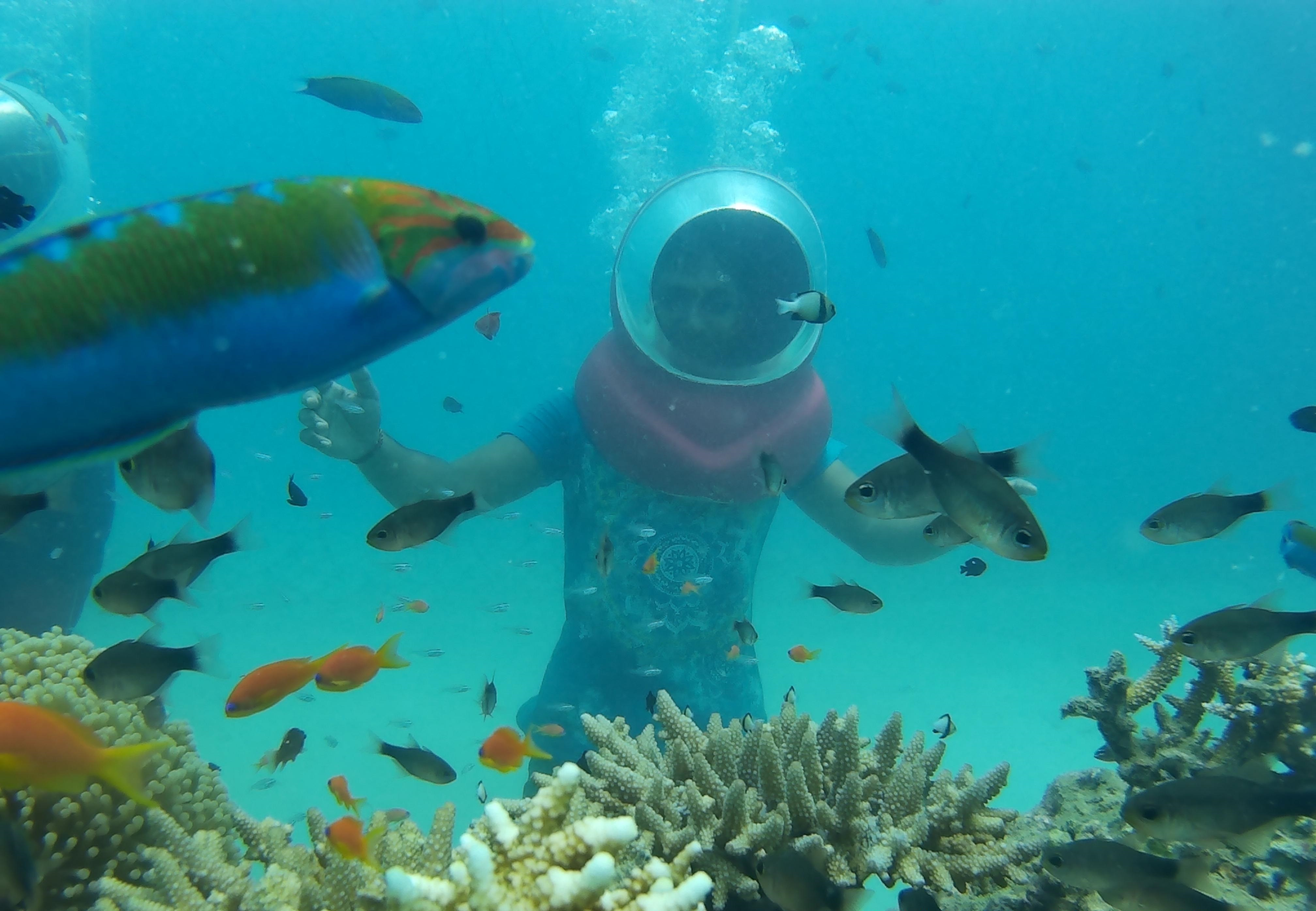 Guy surrounded by fish during Sea Walk in Andaman