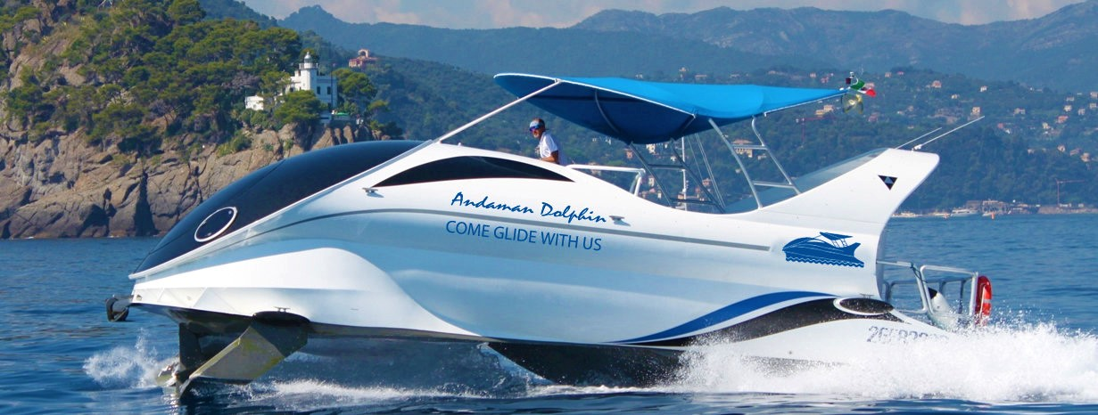 Dolphin Glass Bottom Boat
