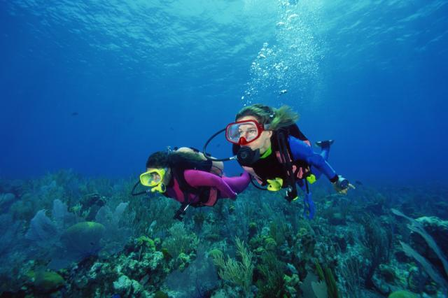 Person Doing Scuba Diving
