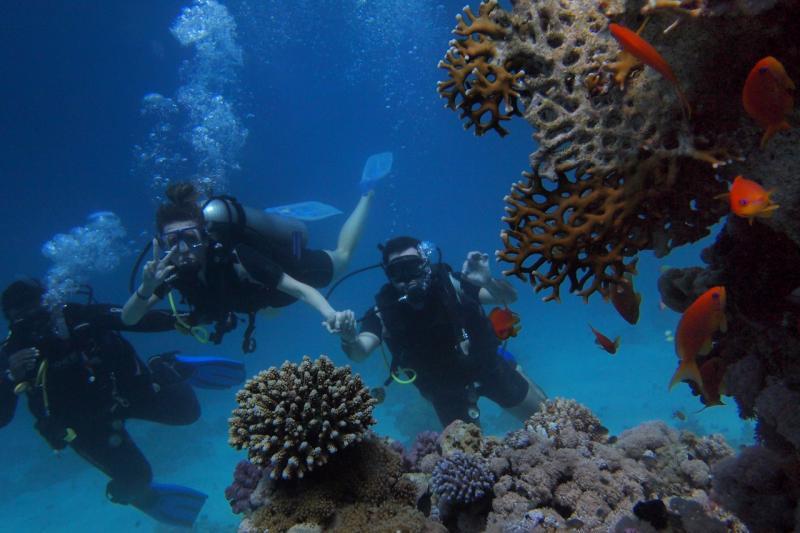 3 Guys Scuba Diving near Coral Reefs