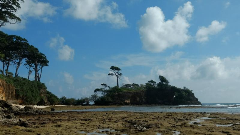 Islet near Sitapur Beach in Neil Island