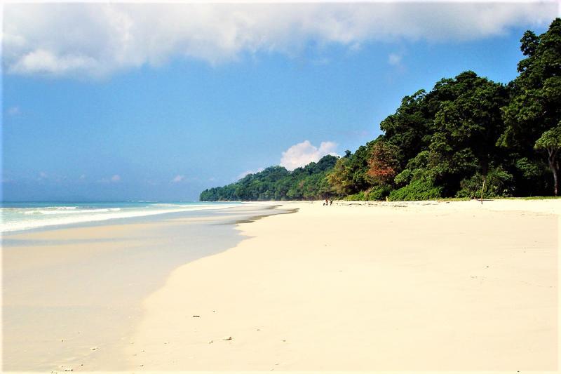 Radhanagar Beach Sea and Shore