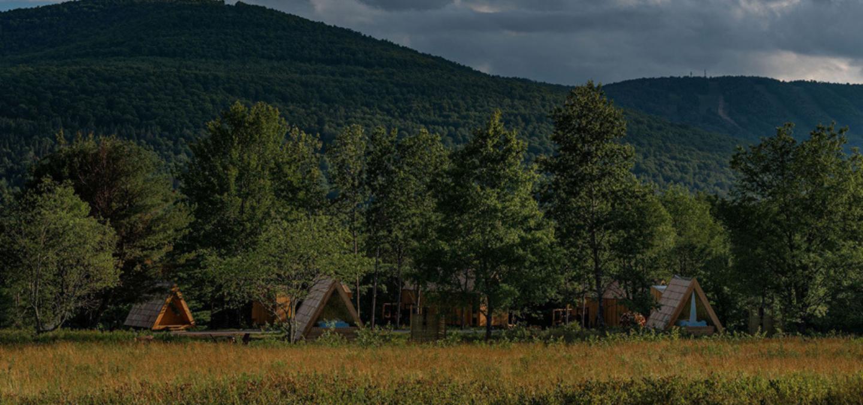 Lushna, la cabane en bois de votre enfance