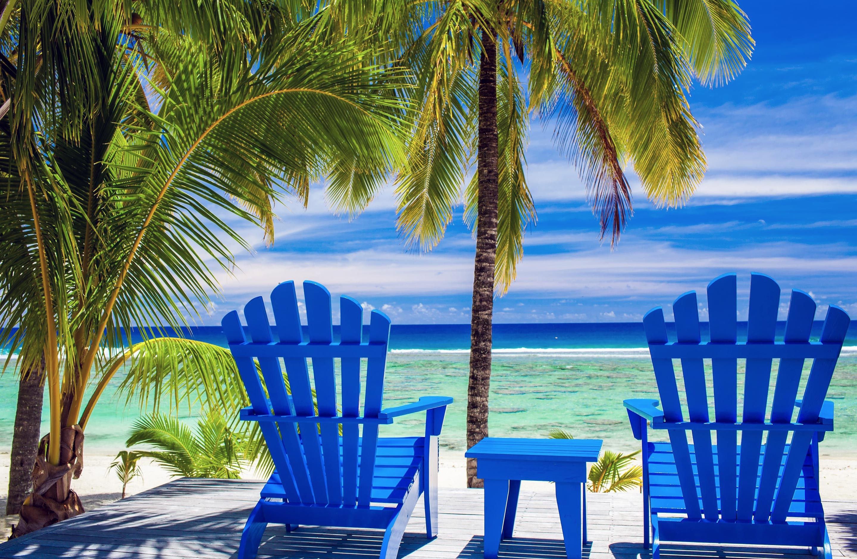 Photo of Beach Chairs & Palm Trees Overlooking The Ocean