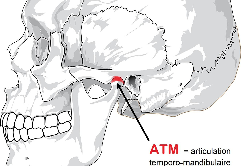 L'Ostéopathie et le Serrement de dents