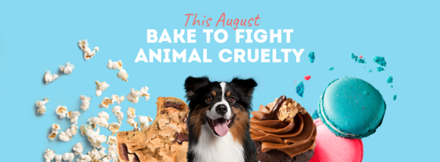 Chaos Theory Games hosts RSPCA Cupcake Day at GamePlus Sydney. Baking to raise money to help rescue, rehabilitate and rehome animals in need in Australia.