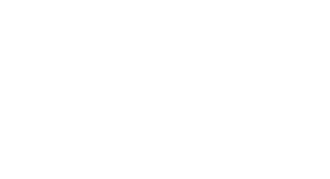 An award icon for the AEAF Silver Winner 2019