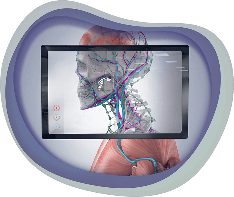 An educational game about anatomy used on an iPad, icon for Applied Games at Chaos Theory Games, Sydney Australia