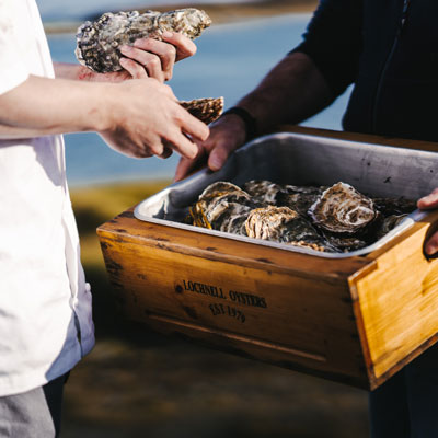 Head Chef Michael Leathley visits Lochnell Oysters