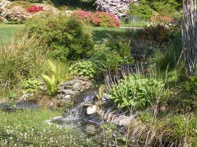 Druimnell Gardens, Port Appin