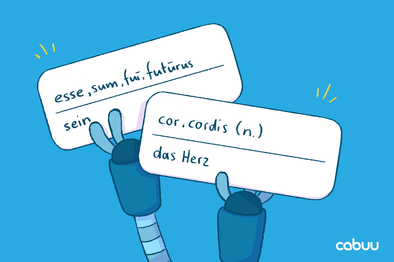 Illustration von Vokabelkarten in der cabuu App