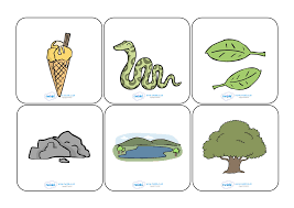 Twinkl flashcards are a useful manipulative tool for home learning