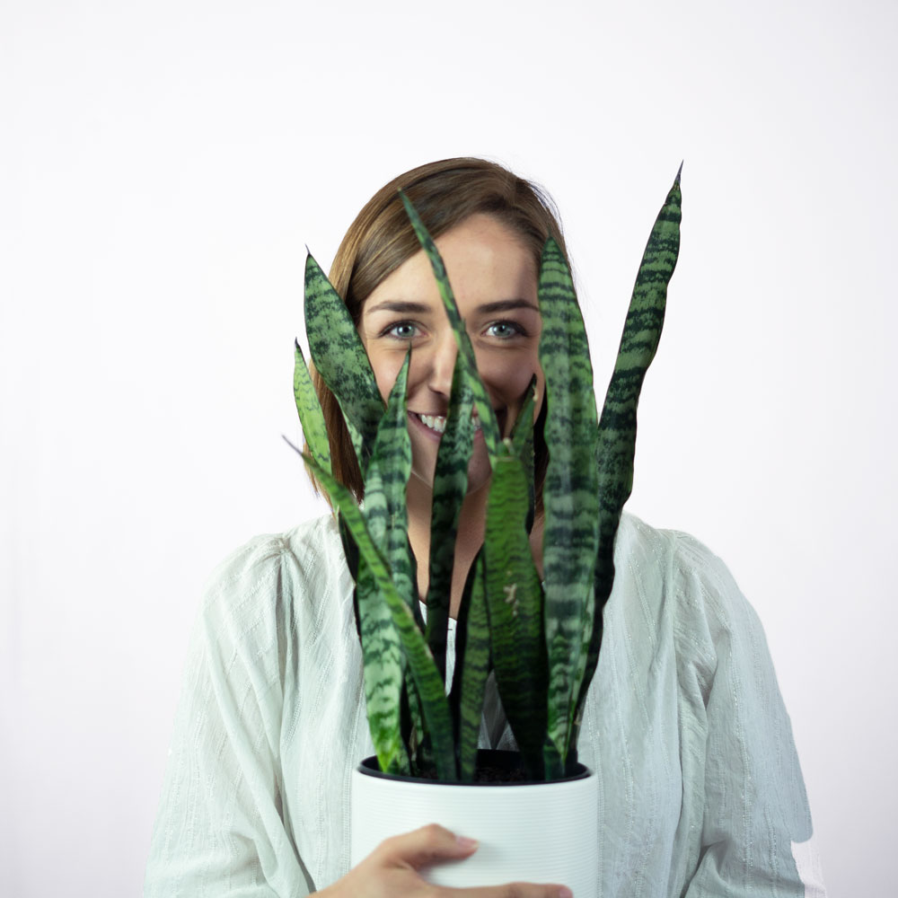 Mary hiding behind a plant