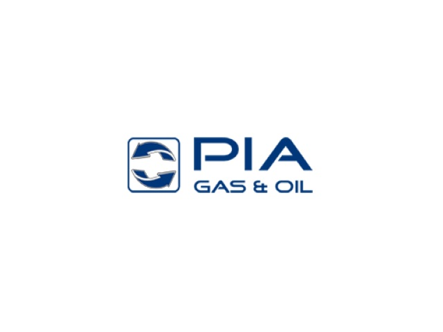 P.I.A GMBH & Co Ltd logo