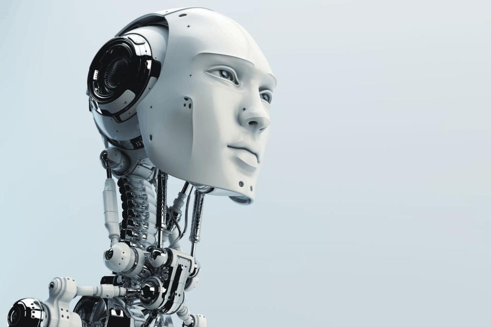 A human like robot skeleton