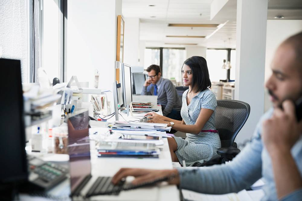 Employees busy working in an office on their desktops