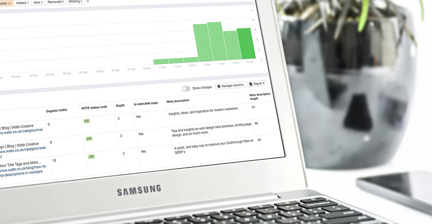 website audit on a laptop screen