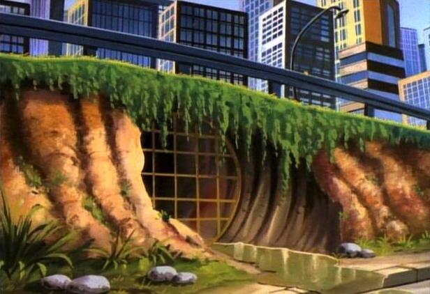 Teenage Mutant Ninja Turtles sewer home entrance