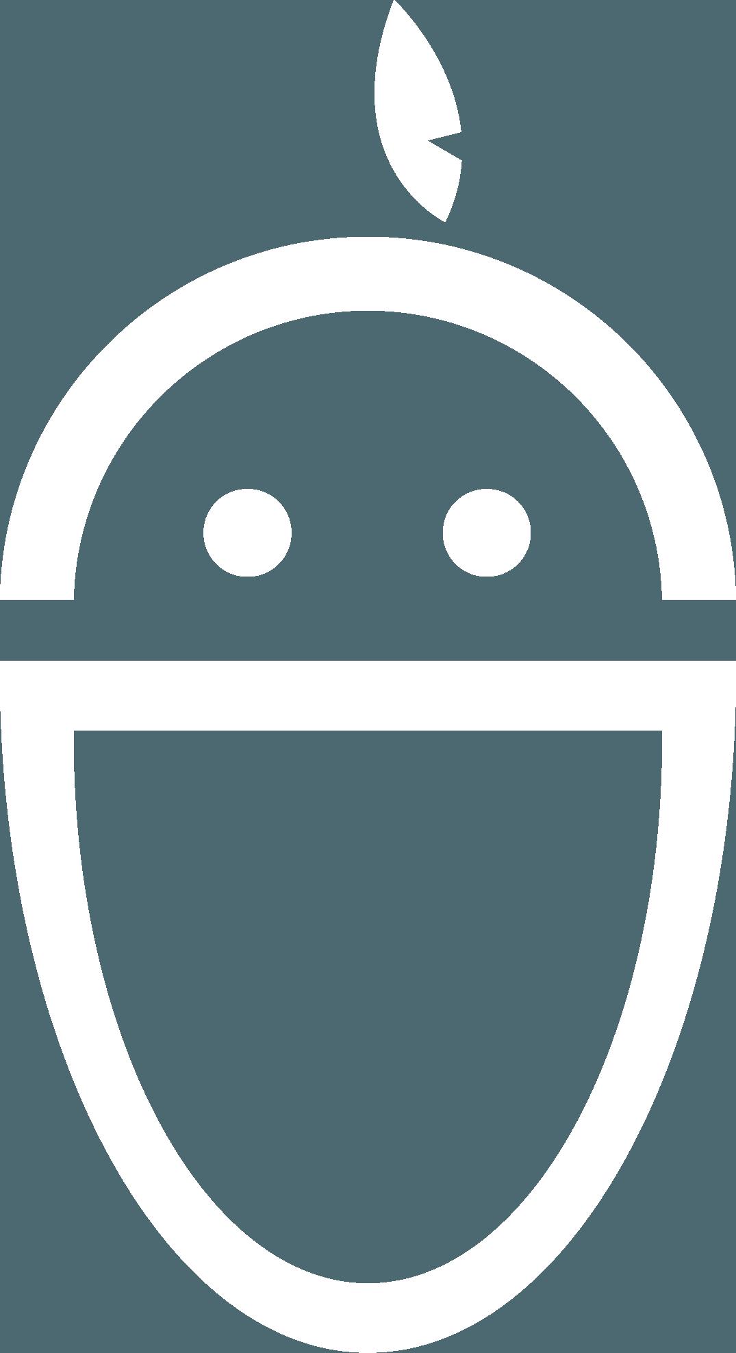 אפליקציית רובין