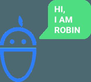הרובוט של רובין