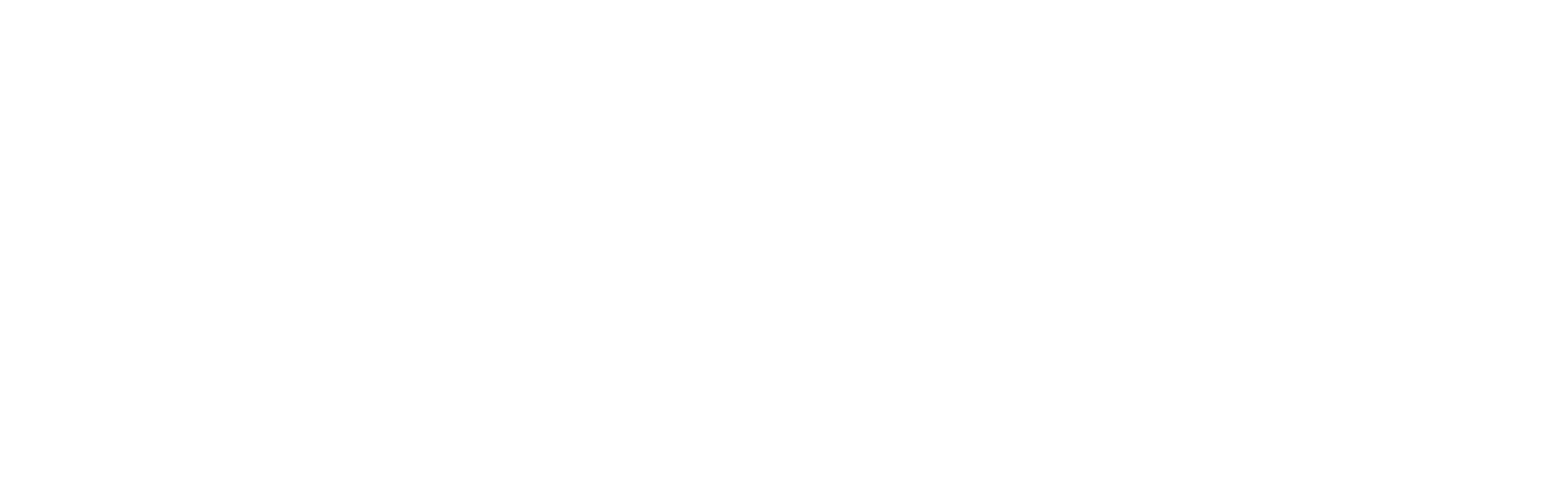 רובין פנסיה וביטוח
