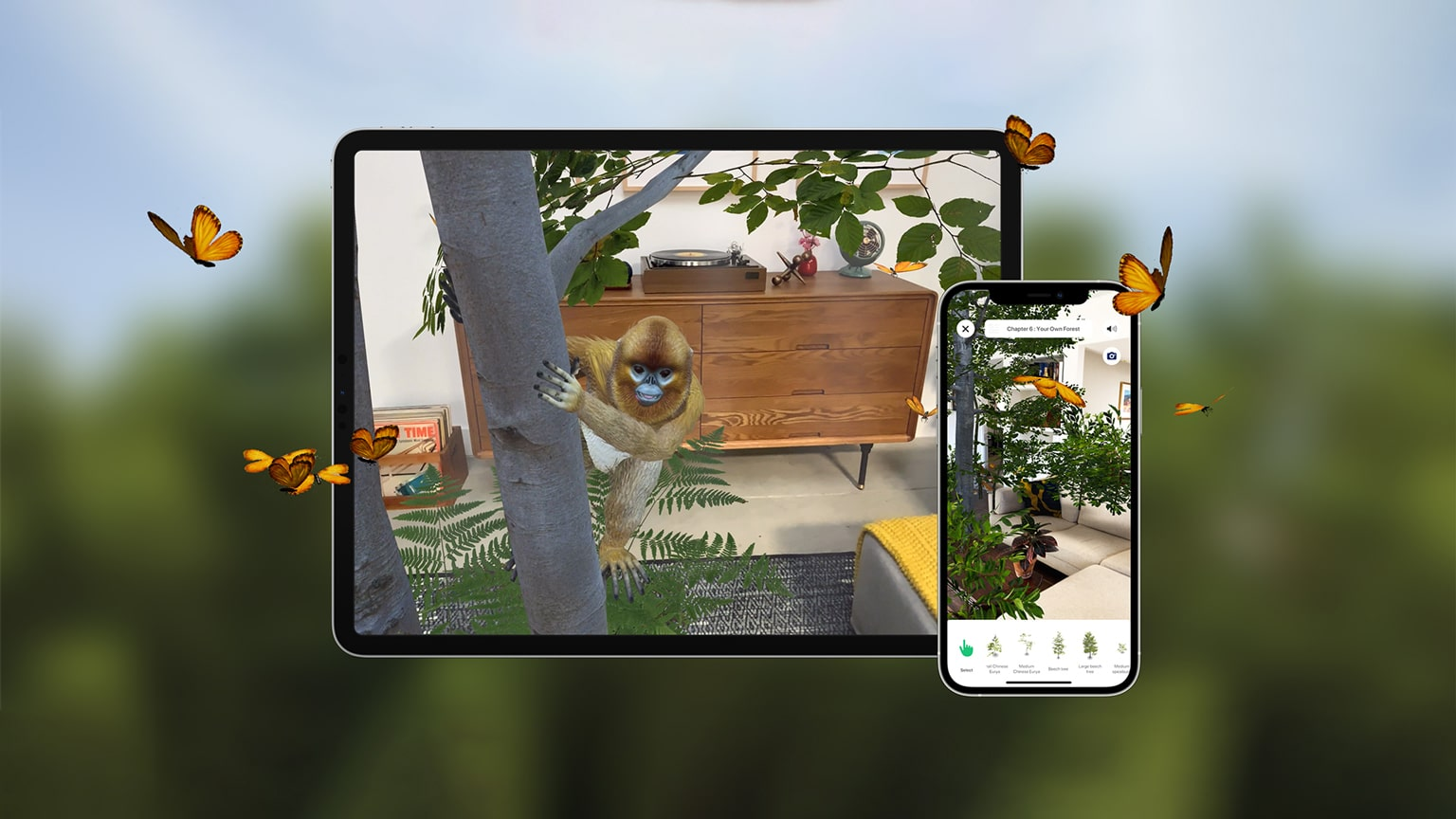 WWF - Augmented Reality Forest Platform