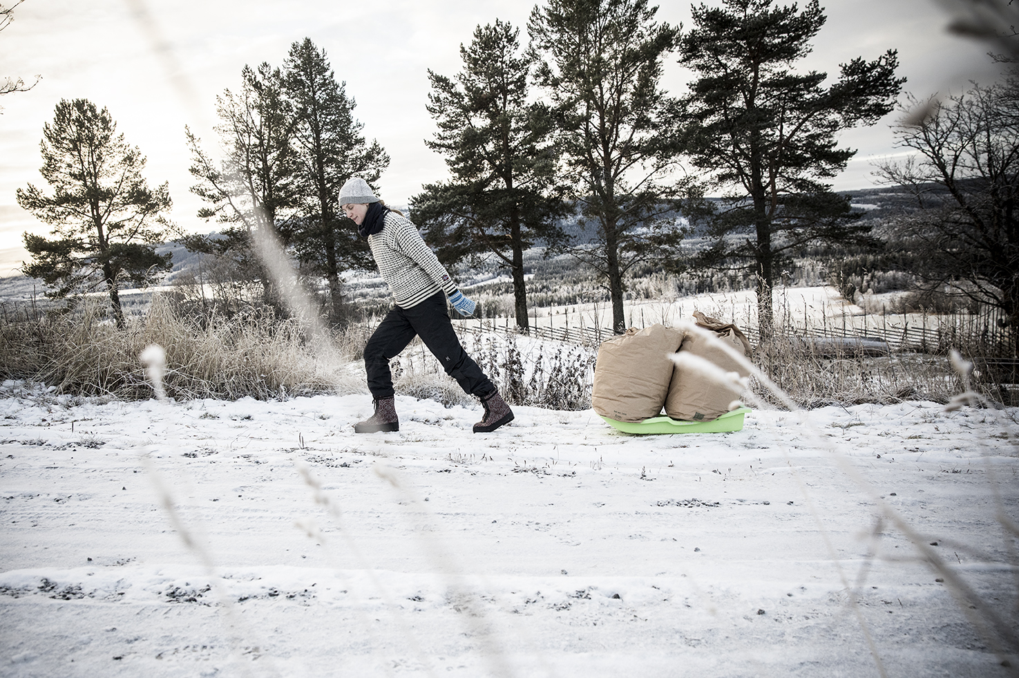 A woman wearing warm winter clothes pulling bags of wool on a sled in a natural, snow environment