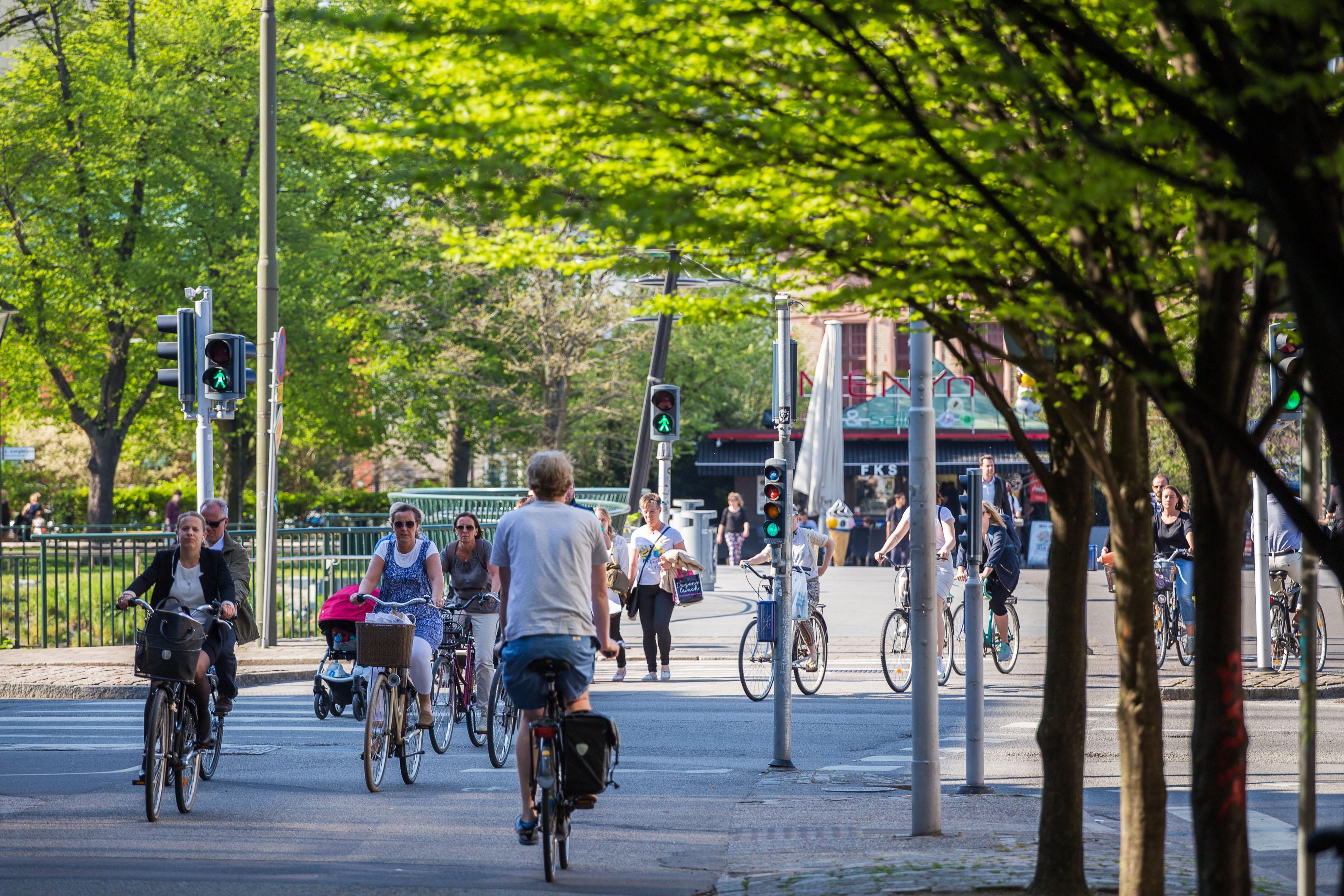 Cykelbild från Malmö