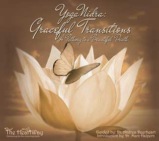 cd cover of graceful transitions