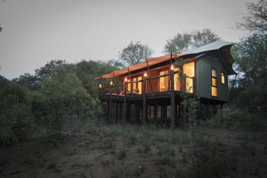viaggio di nozze in africa safari di lusso in Sudafrica
