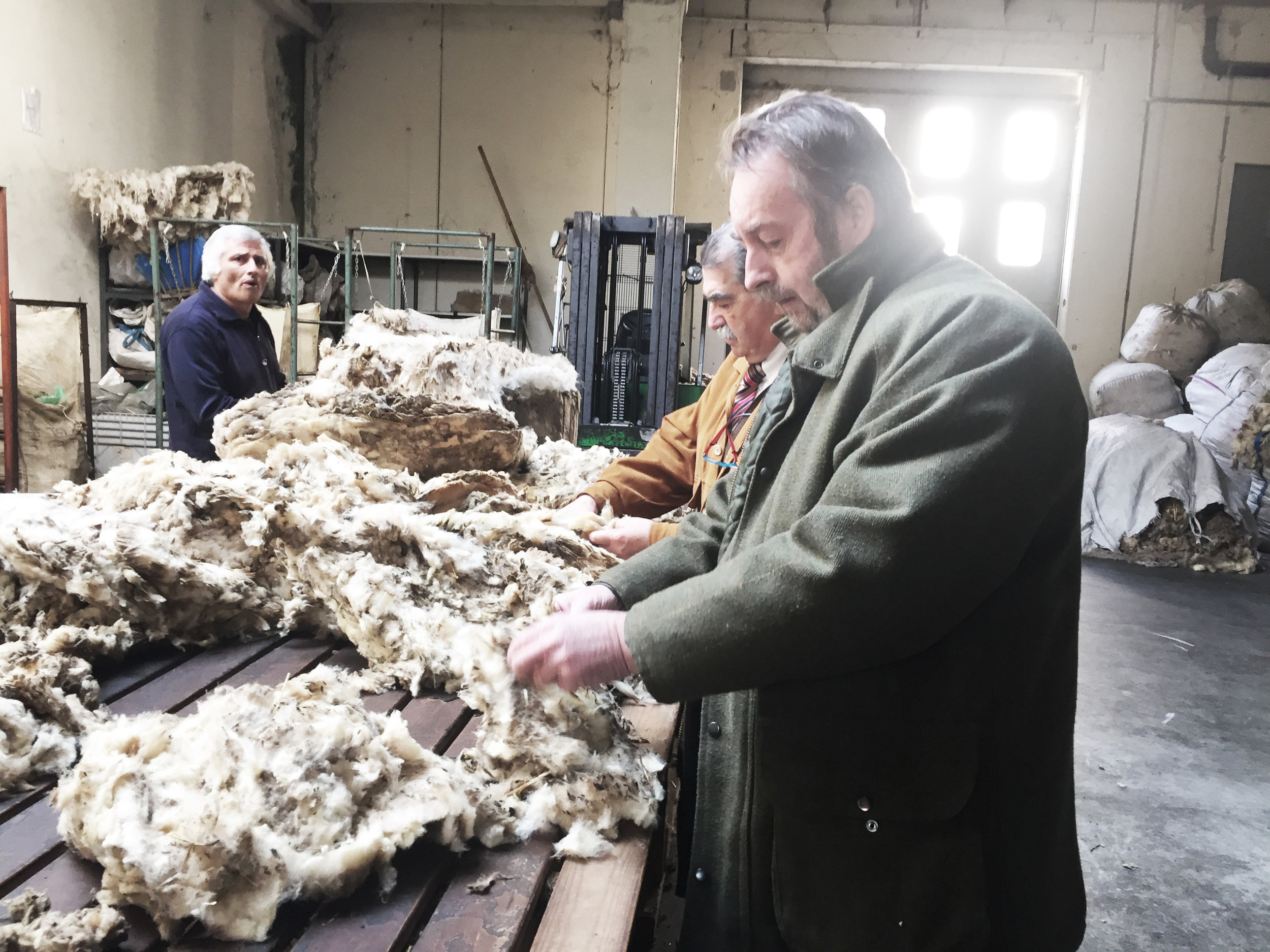 Three men are gathered at a sorting table in a light, airy factory with their hands sorting through wool